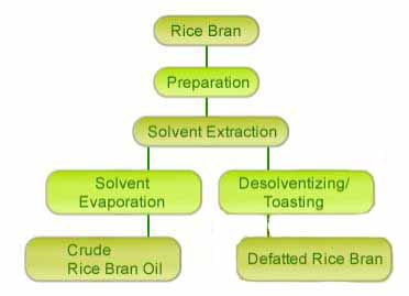 rice bran oil extraction and refining plant