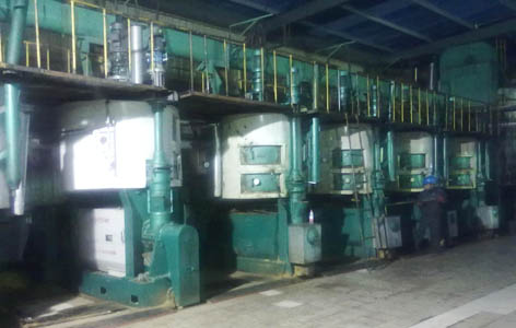 castor seed oil processing